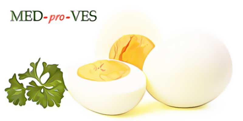 Яйцо вареное целое и в разрезе