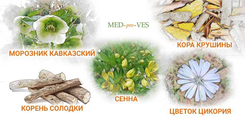 Слабительные травы для похудения