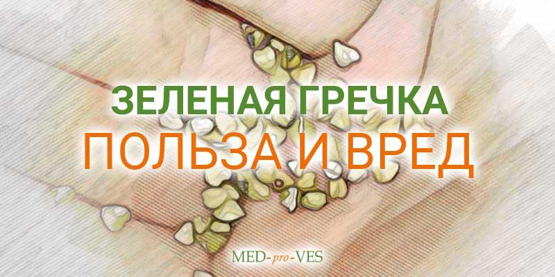 Зеленая гречка польза и вред
